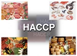 HACCP : Hệ thống quản lý an toàn thực phẩm